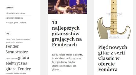 gitary-fender.pl